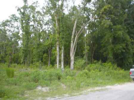 2.41 Acres at the corner of US349