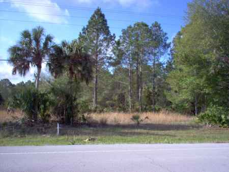 Lot 99 Suwannee Palms light commercial on HWy349