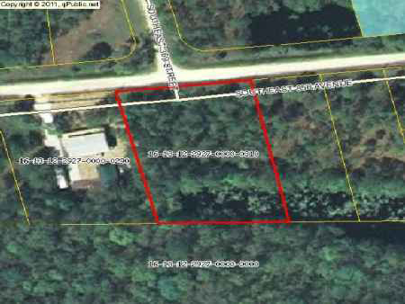 Lot 31 & 32 Suwannee Palms