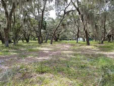 Holts 10.8 acres with ponds 1.5 miles from Suwannee